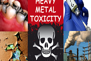 Heavy-Metal-Toxicity